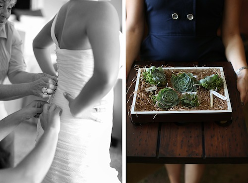 """Love Succulently"" Real Wedding"