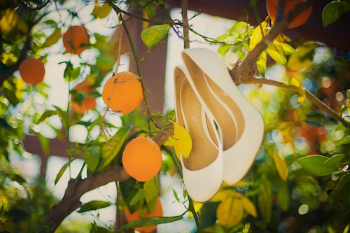 Orange Grove Wedding…