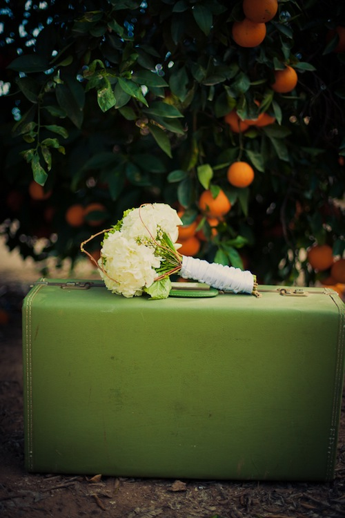 orange-grove-outdoor-wedding-details-suitcase-vintage-rustic-suitcase