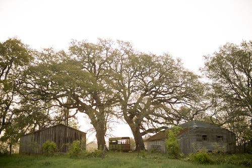 found-vintage-rentals-studio-emp-jeni-maus-round-top-texas-flea-market