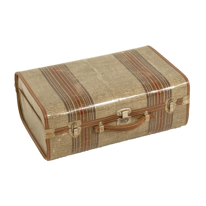 Todd Striped Suitcase