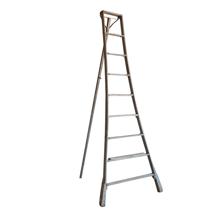 Schultz Orange Grove Ladder