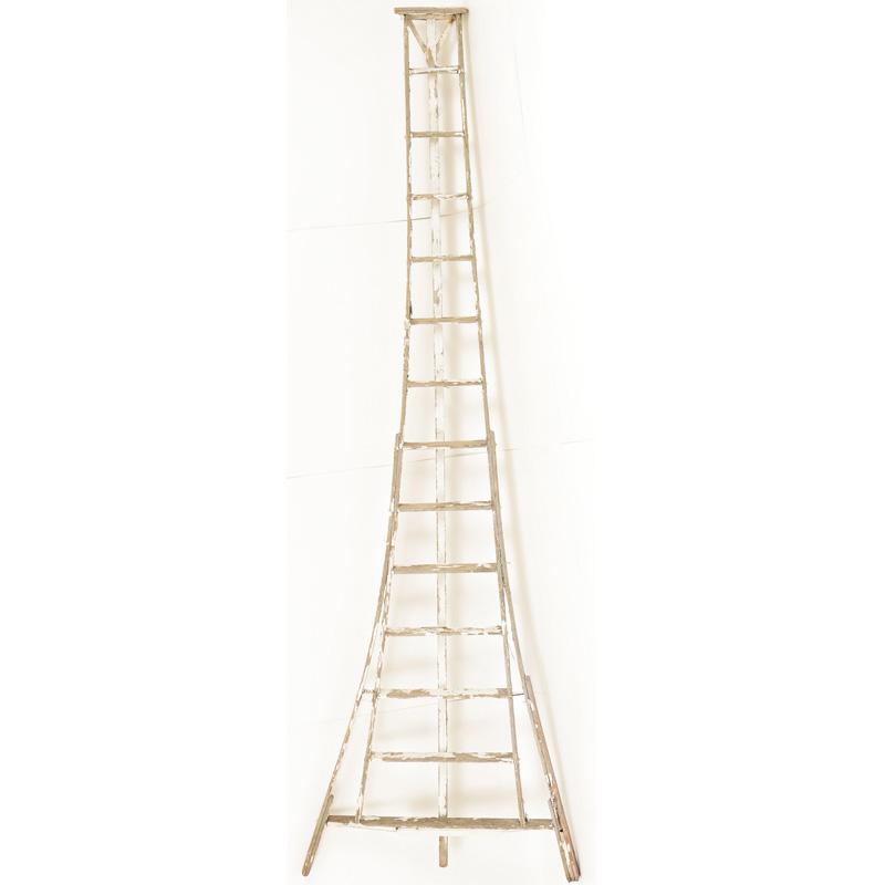 Wimberly Orange Grove Ladder