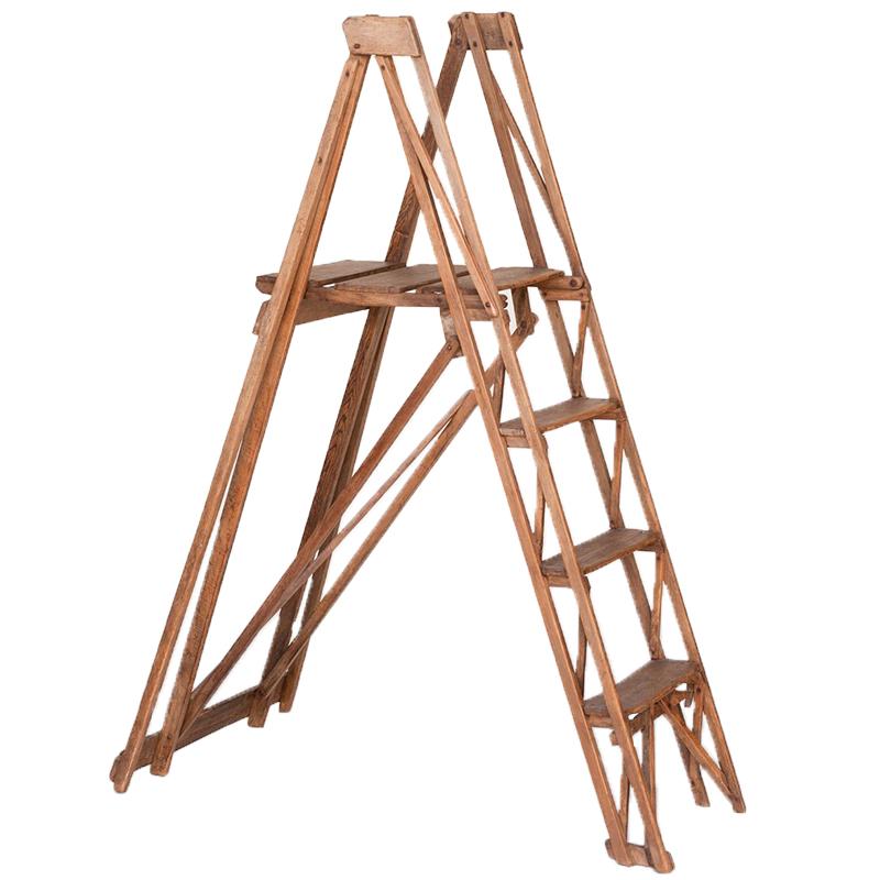 Burns Ladder