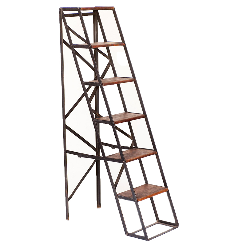 Neela Ladder Bookshelf