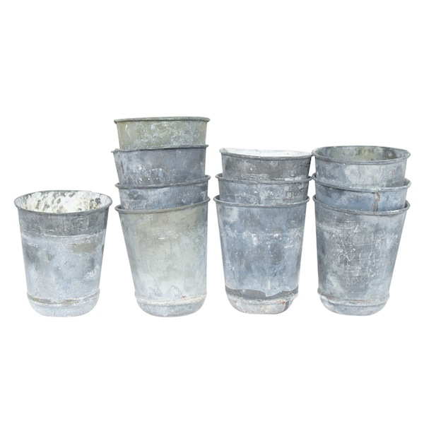 Eden Seed Pots (set of 3)