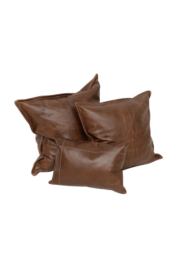 Vail Leather Pillows