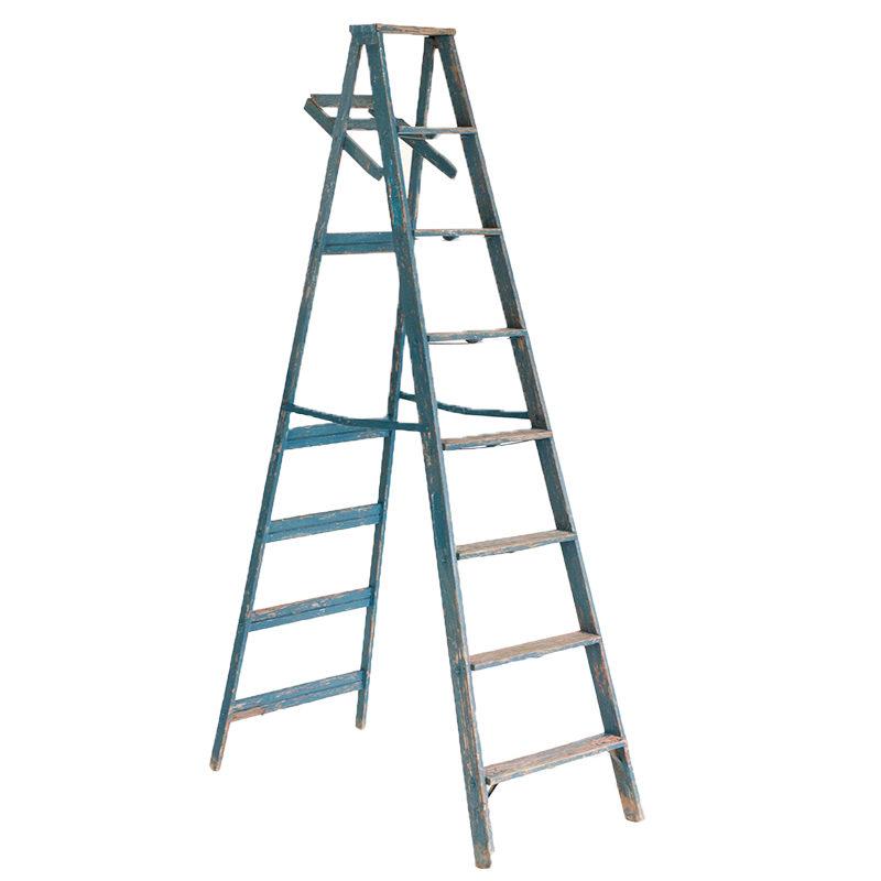 Hayes Blue Ladder