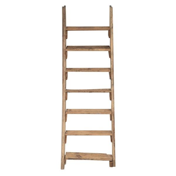 Animas Ladder