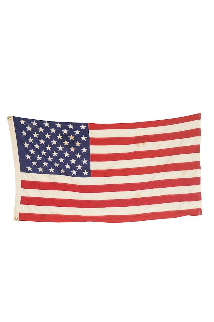 Beagle Flag