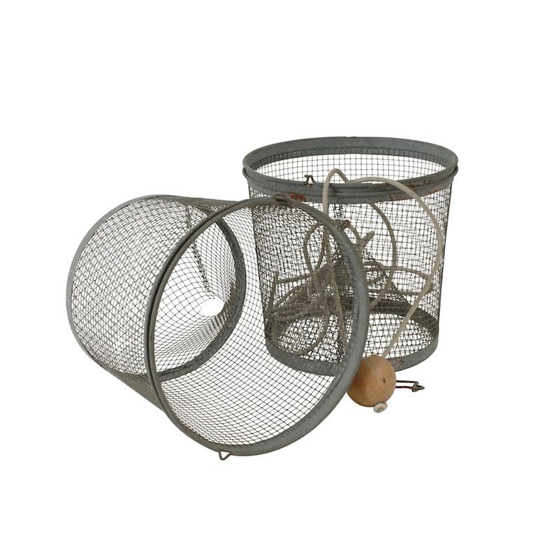 Beech Minnow Net