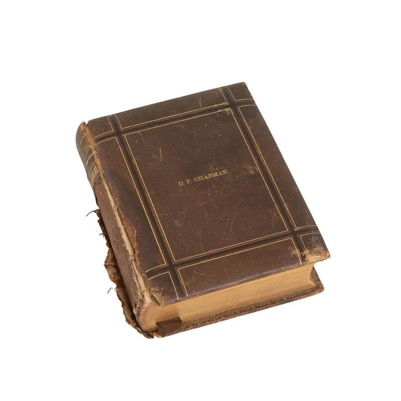 Pauline Vintage Bible