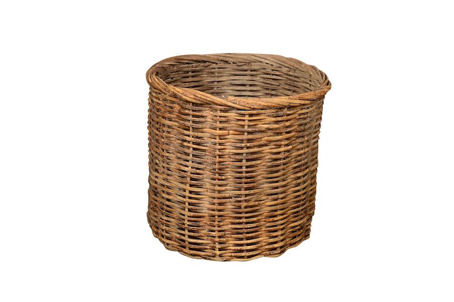 Salil Basket