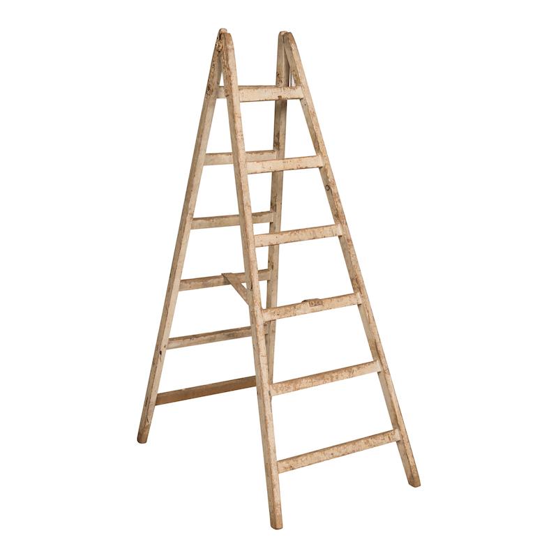Alder Ladder