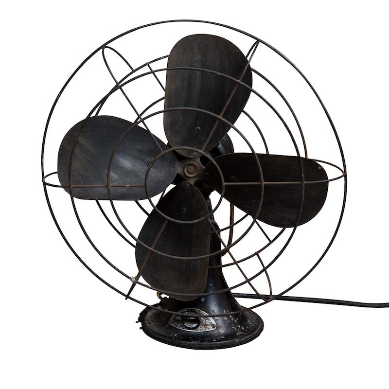 Seacrest Fan