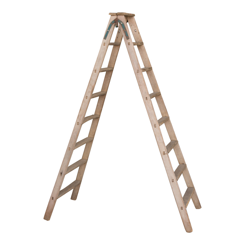 Ruth Ladders